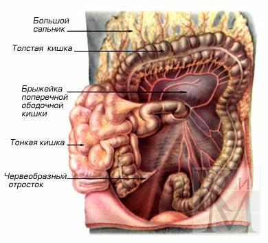 Опухоль брюшной полости