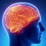 Опухоль головного мозга.Сколько с ней жывут?