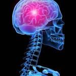 Первые признаки опухоли головного мозга