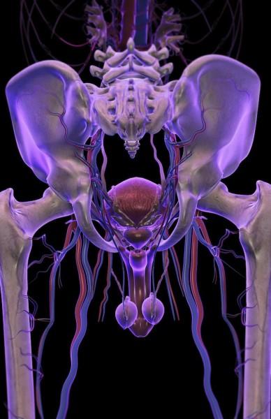 Последствия простатита у мужчины