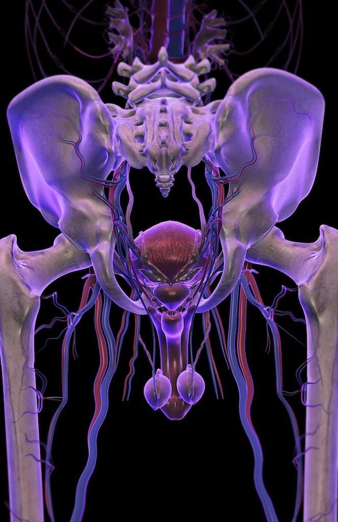 препараты при простатите аденоме