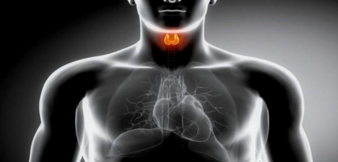Фолликулярная аденома щитовидной железы