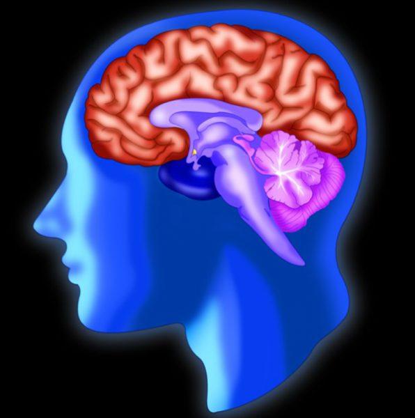 Липома головного мозга