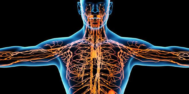 Опухоль лимфатических узлов: как лечить?